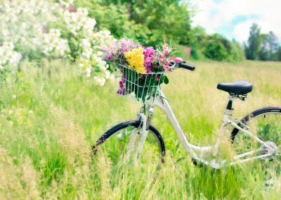 Primavera 07