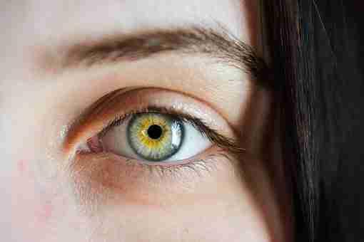 Estuches lentillas originales: captando la esencia de cada cliente