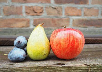 Frutas 17