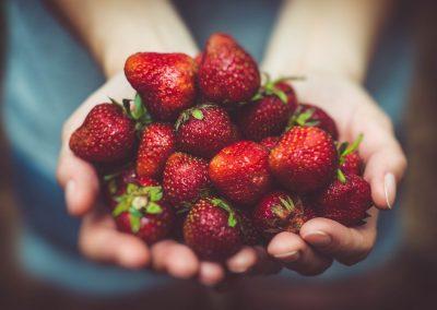 Frutas 19