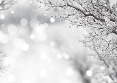 Invierno 10