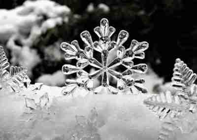 Invierno 25