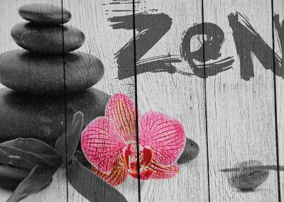 Zen 11