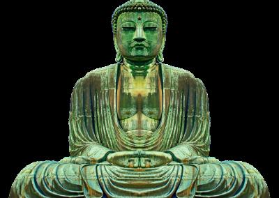 Zen 16